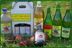 A selection from Hancocks Devon Cider